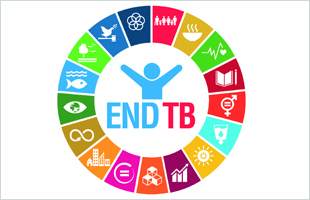 Global Ministerial Conference – Ending tuberculosis in the SDG era: A multisectoral response
